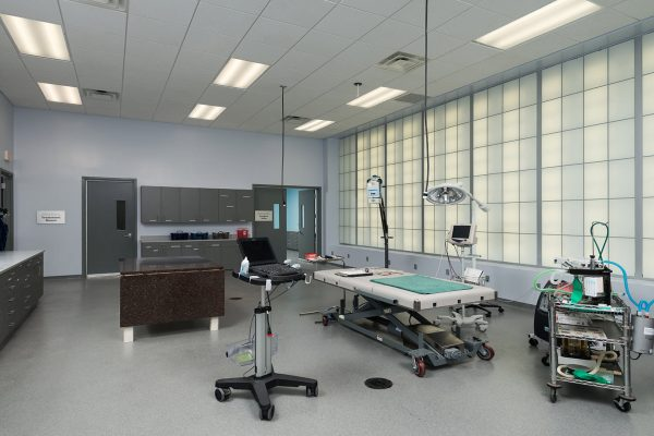 2.-Animal-Hospital